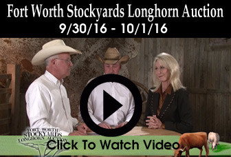 Fort-Worth-Stockyards-Sale-Online-Ad