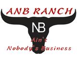 Danley-ANB-web-ad